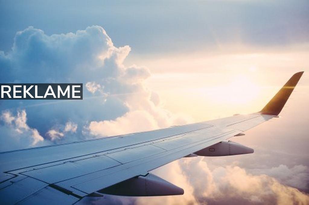 Drømmer du om at rejse ud i verden?