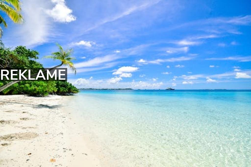 Har du planlagt dette års sommerferie eller venter du på den rette afbudsrejse?