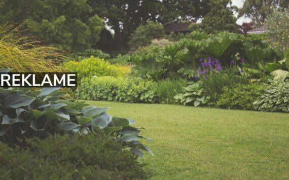 Hold haven i god orden