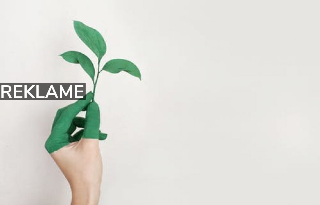 Lev en mere bæredygtig hverdag for klimaet og de næste generationers skyld