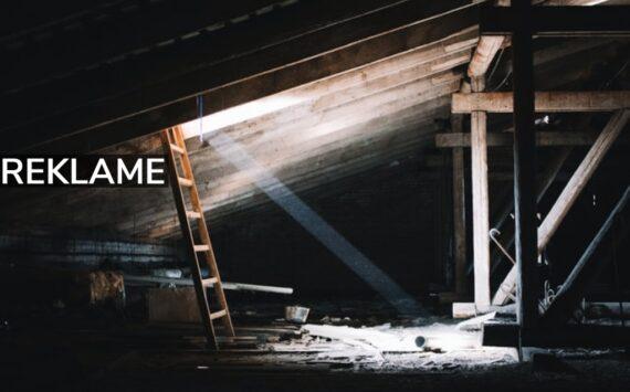Mår på loftet? Sådan skal du gøre!